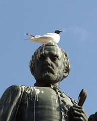 Bird_on_statue_head