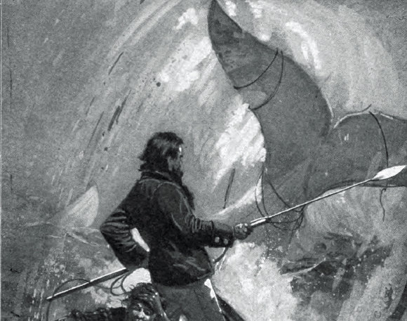 Moby-dick2
