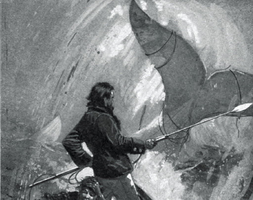 Could you say that Moby Dick is an epic?