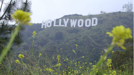 Hollywoodcropped