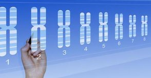 Gene%20sequencing%20ss