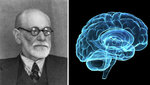 Freud%20brain