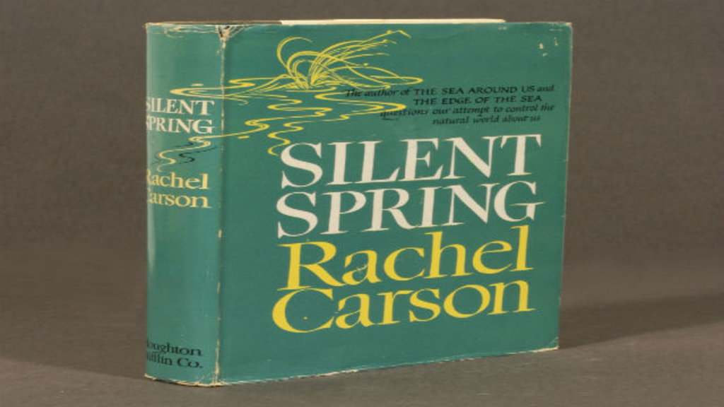 Silent Spring Essay Thesis  Research Paper Writing Service   Silent Spring Essay Thesis Excerpt From Essay  Silent Spring By Rachel  Carson Rachel Carsons Silent