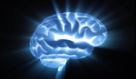 Brain%20light%20pulse%20ss