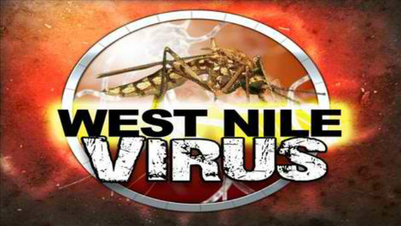 West%20nile%20virus%20facts