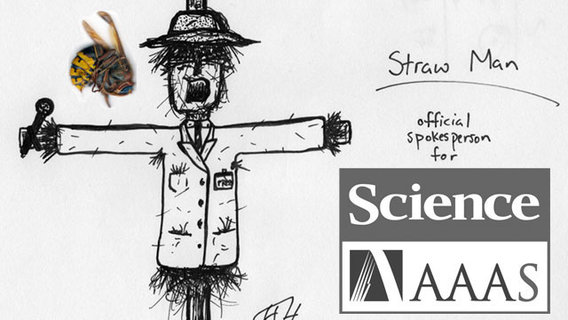 Straw-man-science-sting