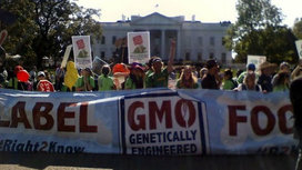 Washington-state-gmo-labeling-initiative-to-go-to-the-voters-in-a-november-ballot_strict_xxl