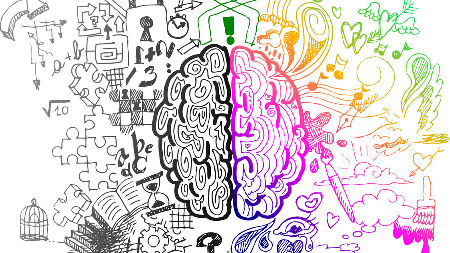 How Learning Art Alters Brain Structure