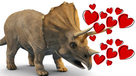 Triceratops_in_love2