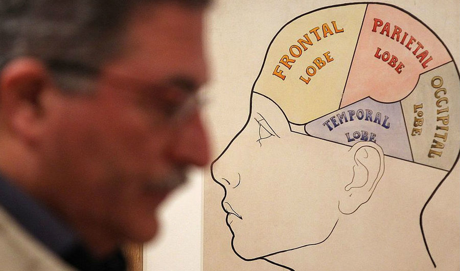 Free Will or Free Won't? Neuroscience on the Choices We Can (and Can't) Make