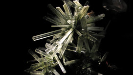 Wla_hmns_selenite