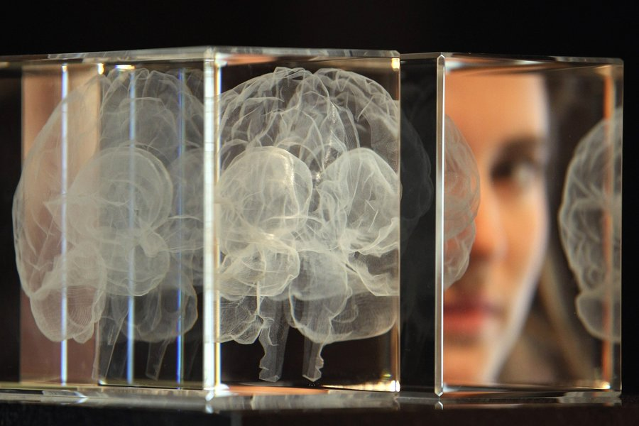 Does the Human Brain Operate Outside of the Laws of Physics?