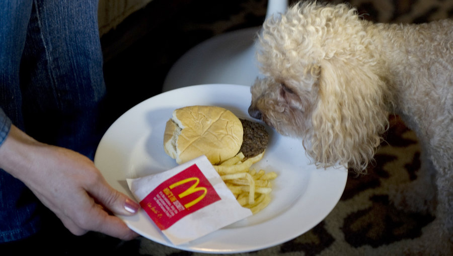 resistance to change in mcdonalds A change like this could take decades  mcdonald's investors want the burger chain to  eating antibiotic-treated meat can lead to certain drug resistance in humans .