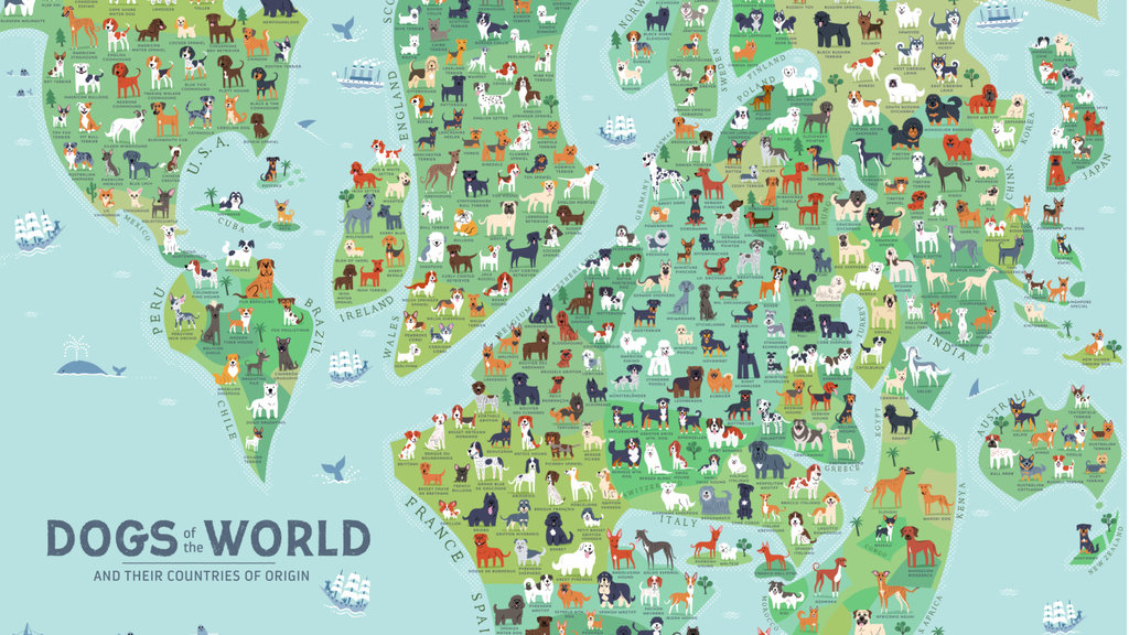 Over 40 of all officially registered dog breeds originate in this map of dog breeds is even more eurocentric than your average mercator projection gumiabroncs Gallery