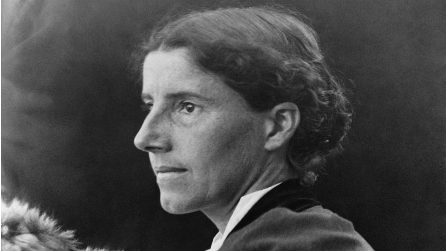 the concept of sex and gender in charlotte perkins herland Towards a feminist collectivism: charlotte perkins gilman and the nationalist movement marguÉrite corporaal - free download as pdf file (pdf), text file (txt) or read online for free towards a feminist collectivism: charlotte perkins gilman and the nationalist movement marguÉrite corporaal.