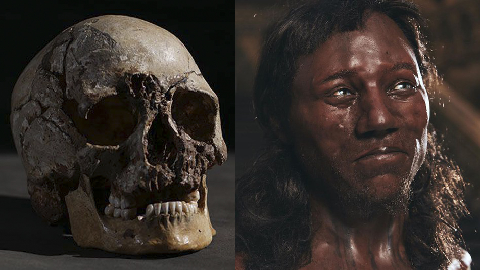 Cheddar man reconstructed